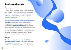 blue Vista previa del Perfil Premium - Página 8
