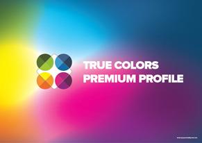 orange Preview Premium Profile - Page 1