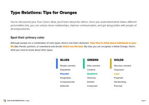 orange Preview Premium Profile - Page 11